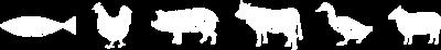 APM-animals-WHITE